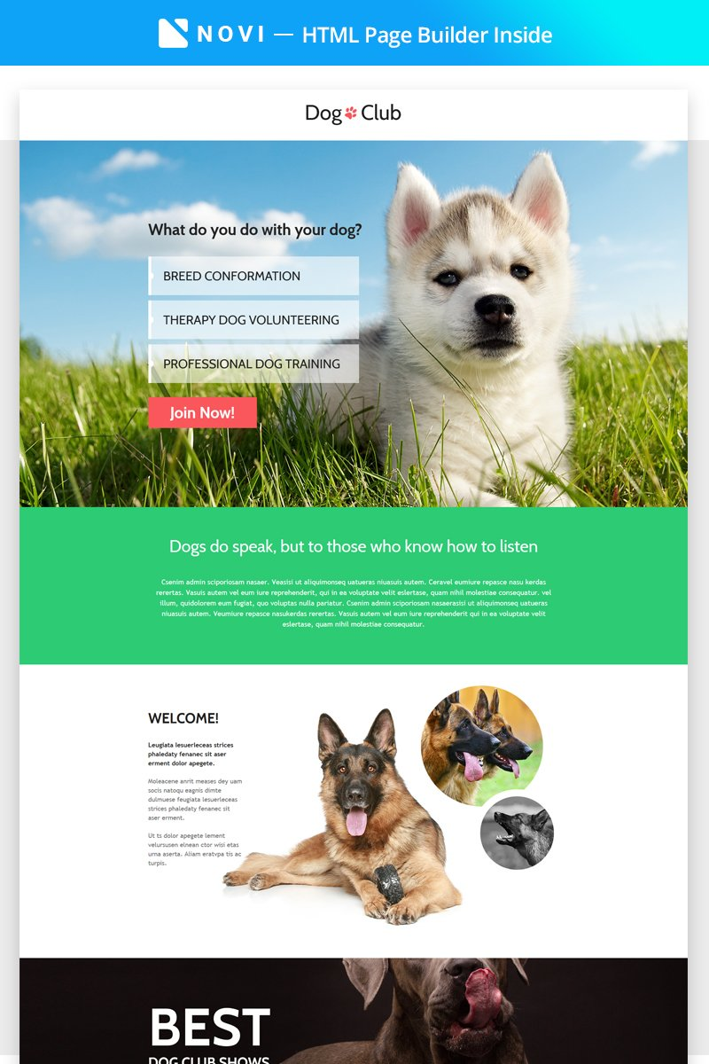 Dog Breeder Compatible with Novi Builder Responsive Landing Page Theme