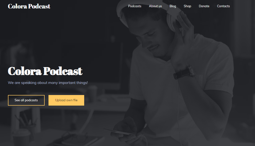 Podcast Website Templates - Weblium