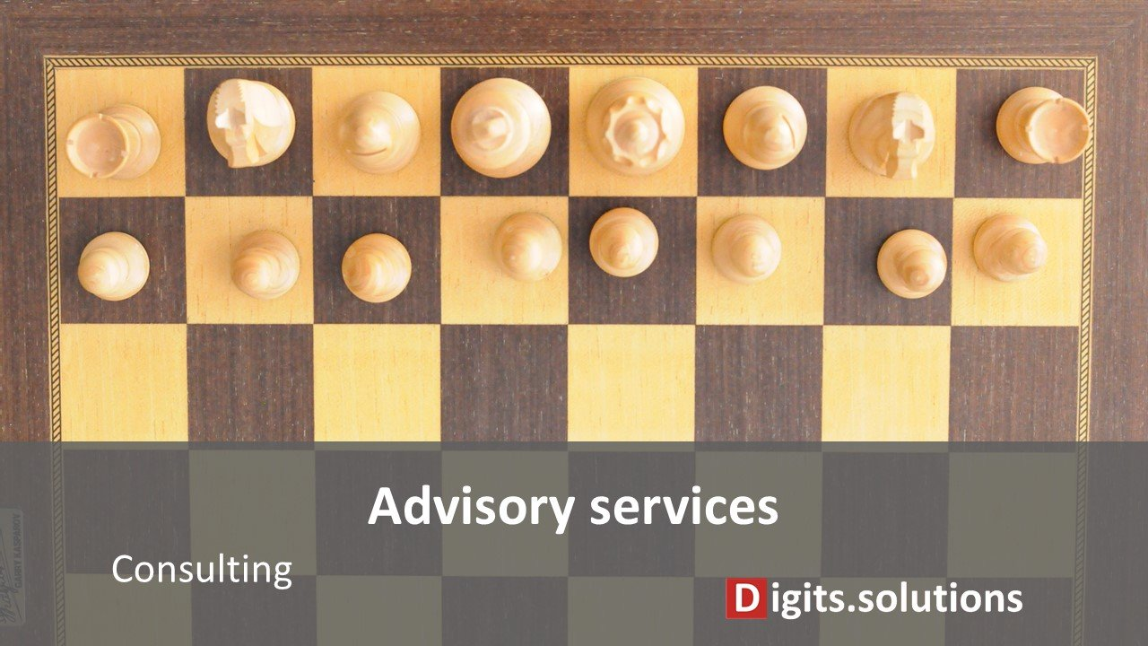 advisory services related to data management, business intelligence