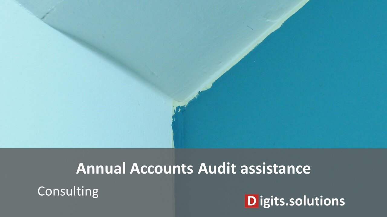 assistance to the legal audit of companies by an auditor in Luxembourg