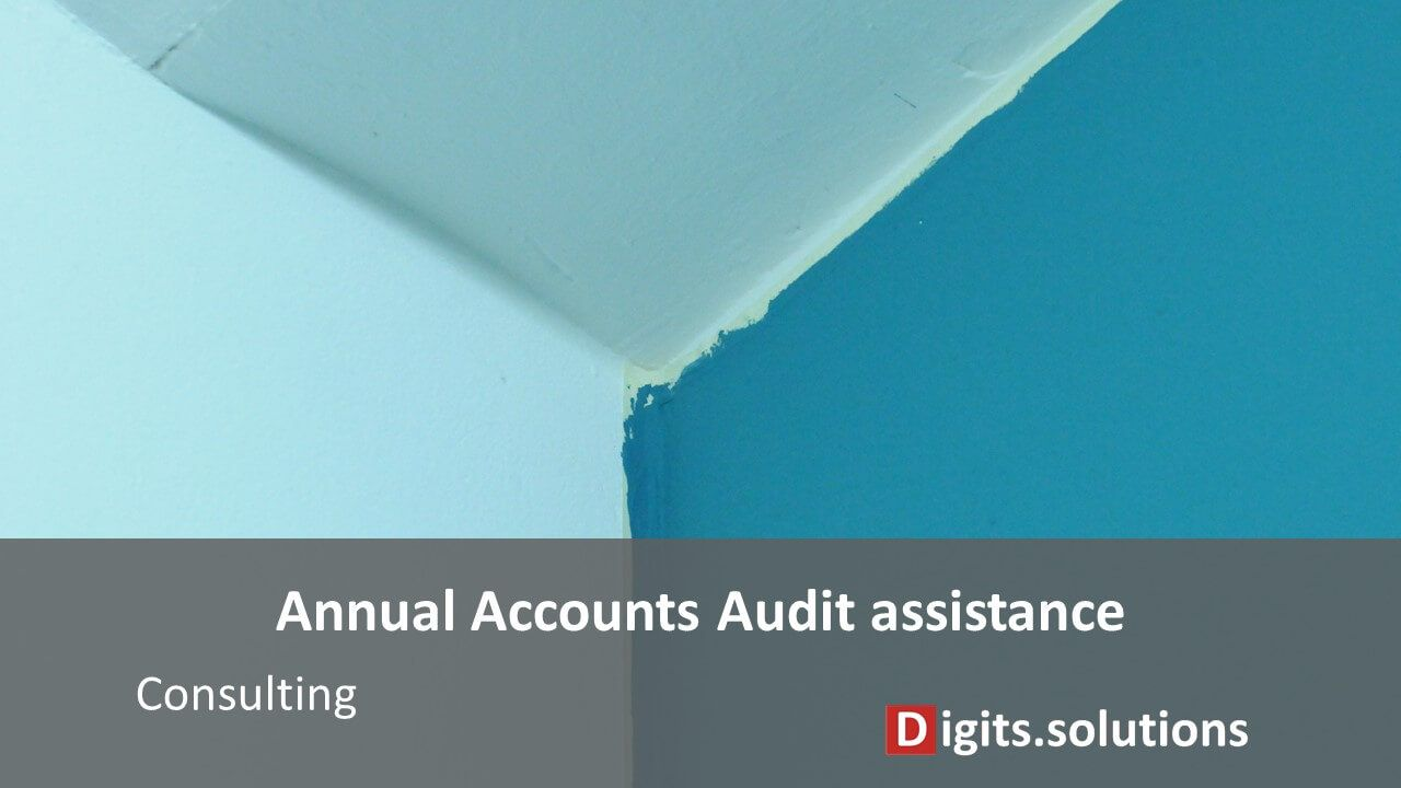 Annual accounts Audit assistance