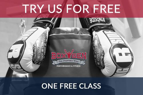 Try Boxygen for free