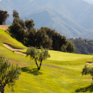 Alhaurin Golf Green Fees